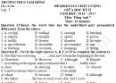 Đề thi giữa kì 2 môn Anh lớp 7 THCS Tam Hồng 2017