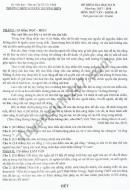 Đề thi kì 2 lớp 10 môn Văn 2018 - THPT Nguyễn Thượng Hiền