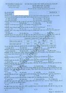 Đáp án đề thi THPTQG môn Sinh năm 2019 mã đề 214 của Bộ GD