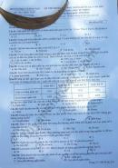 Đáp án đề thi Sinh thi THPTQG năm 2019 mã đề 219 của Bộ GD