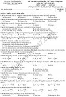 Đề thi khảo sát lớp 11 môn Lý - THPT Liễn Sơn 2019