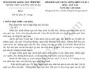 Đề thi thử THPT Quốc gia môn Văn 2020 - THPT Nguyễn Viết Xuân lần 1