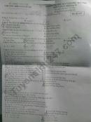 Đề thi kì 1 lớp 10 môn Lý THPT Nguyễn Du 2019 - 2020