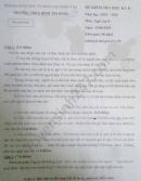 Đề thi học kì 2 môn Văn lớp 8 THCS Bình Trị Đông năm 2020