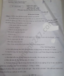 Đề thi học kì 2 năm 2020 môn Văn lớp 8 THCS Trần Phú
