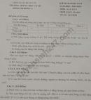 Đề kiểm tra kì 2 lớp 8 môn Lý - THCS Bình Trị Đông 2020