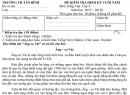 Đề thi kì 2 môn Tiếng Việt lớp 4 năm 2020 - TH Tân Bình