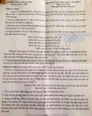 Đề thi thử vào lớp 10 môn Văn THCS Ngô Sĩ Liên năm 2020