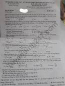 Đáp án đề thi tốt nghiệp THPT 2020 môn Lý mã đề 217