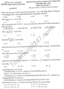 Đề thi giữa kì 2 môn Toán lớp 11 - THPT Trần Hưng Đạo 2021