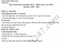 Đề cương ôn tập kì 2 lớp 7 môn Văn 2021 - THCS Thăng Long