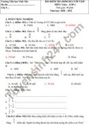 Đề thi học kì 2 môn Toán lớp 4 - TH Vinh Tân 2021 (có đáp án)