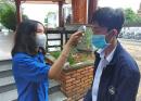 Tra cứu điểm thi vào lớp 10 tỉnh Lạng Sơn năm 2021
